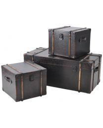 Albany Set Of 3 Trunks