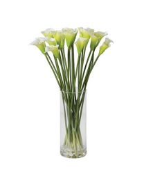 Bright White Calla Lilies In Glass Column Vase