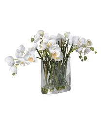 White Orchid Phalaenopsis Stems Arranged In Glass Oblong Vase