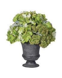 Lime Hydrangea & Sedum Small Arrangement In Dark Grey Ceramic Urn