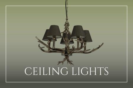 Ceiling Lights range